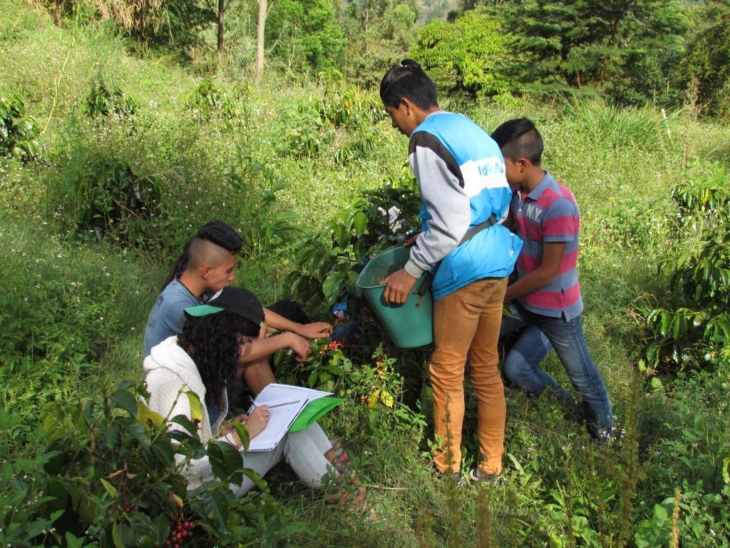 Arraigo territorial: La emigración de los y las jóvenes rurales, un desafío para Boyacá 1
