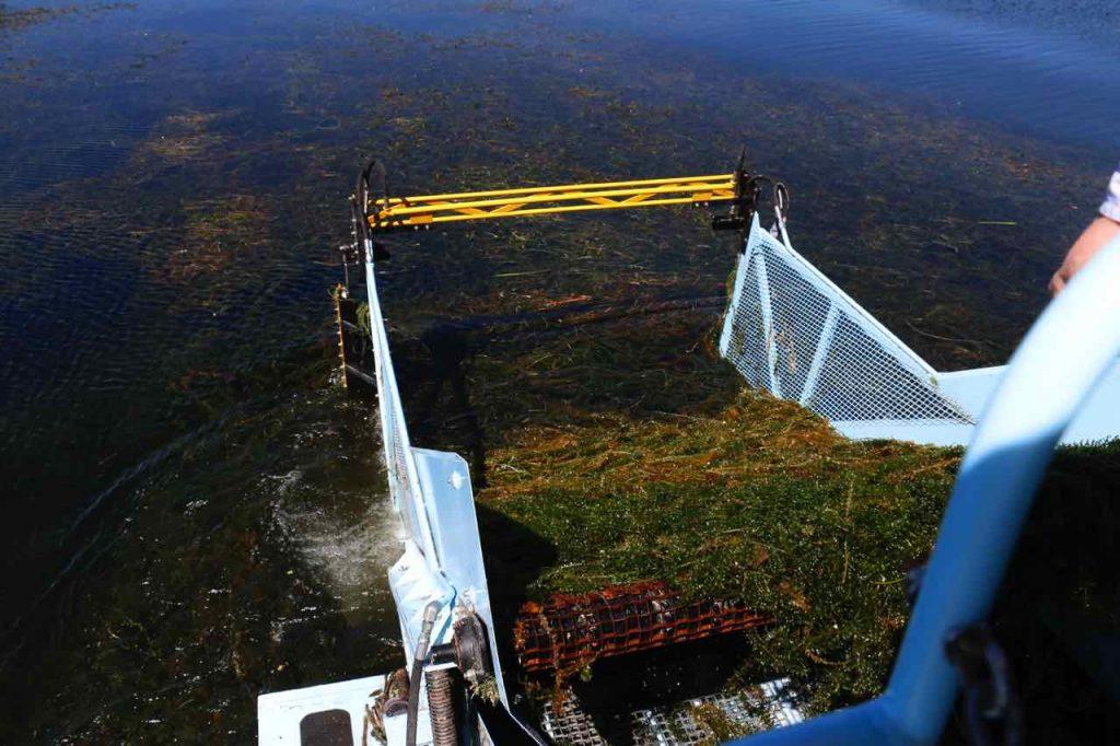 Cosechadora que recolecta las algas del Lago de Tota
