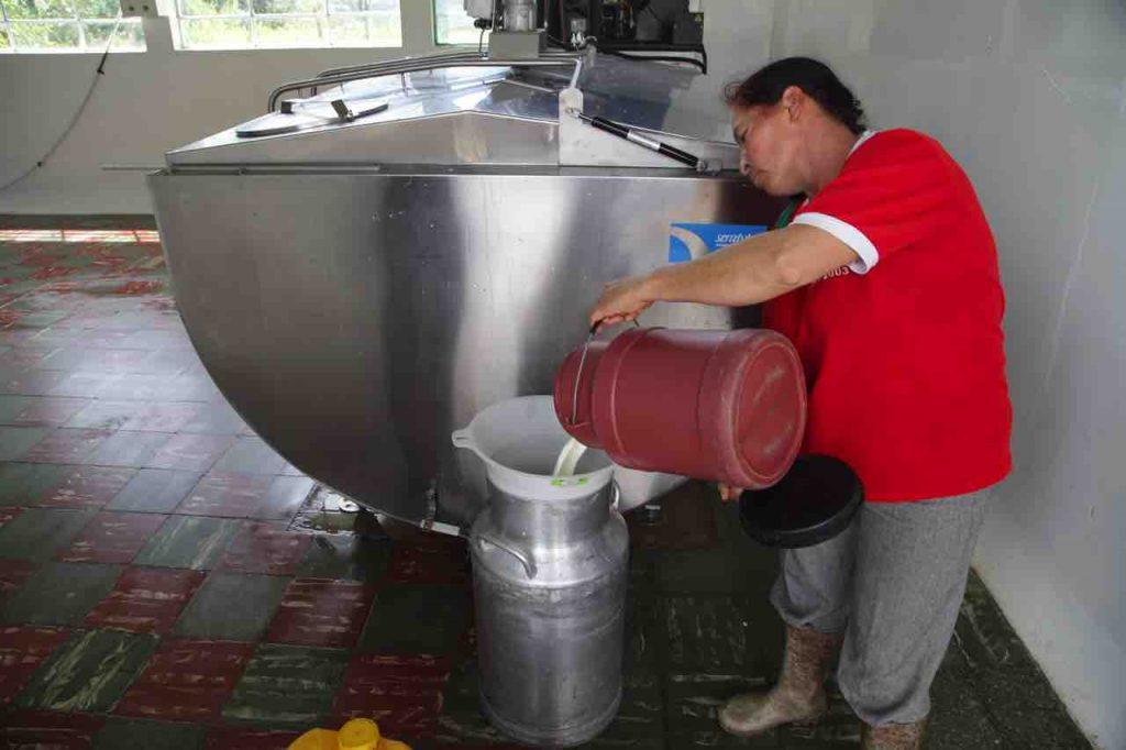 Lacteos y leche en Boyacá