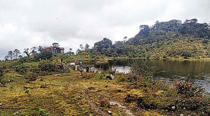 Laguna tarea Mamapacha
