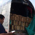Madera ilegal en la Serranía de las Quinchas