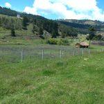 Se VENDE ó ARRIENDA TERRENO 10.650 mts2, sobre la doble calzada Bogotá - Tunja. 3153908855 4