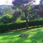 MONIQUIRA Vendo Lote Condominio Campestre Los Naranjos informes: 316 2259331. 3153109559. 3