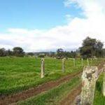 SOTAQUIRA, VENDO USO AGRO INDUSTRIAL AGENTE ESPECIALIZADO, 3153908855 2