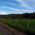 SOTAQUIRA, VENDO USO AGRO INDUSTRIAL AGENTE ESPECIALIZADO, 3153908855 3