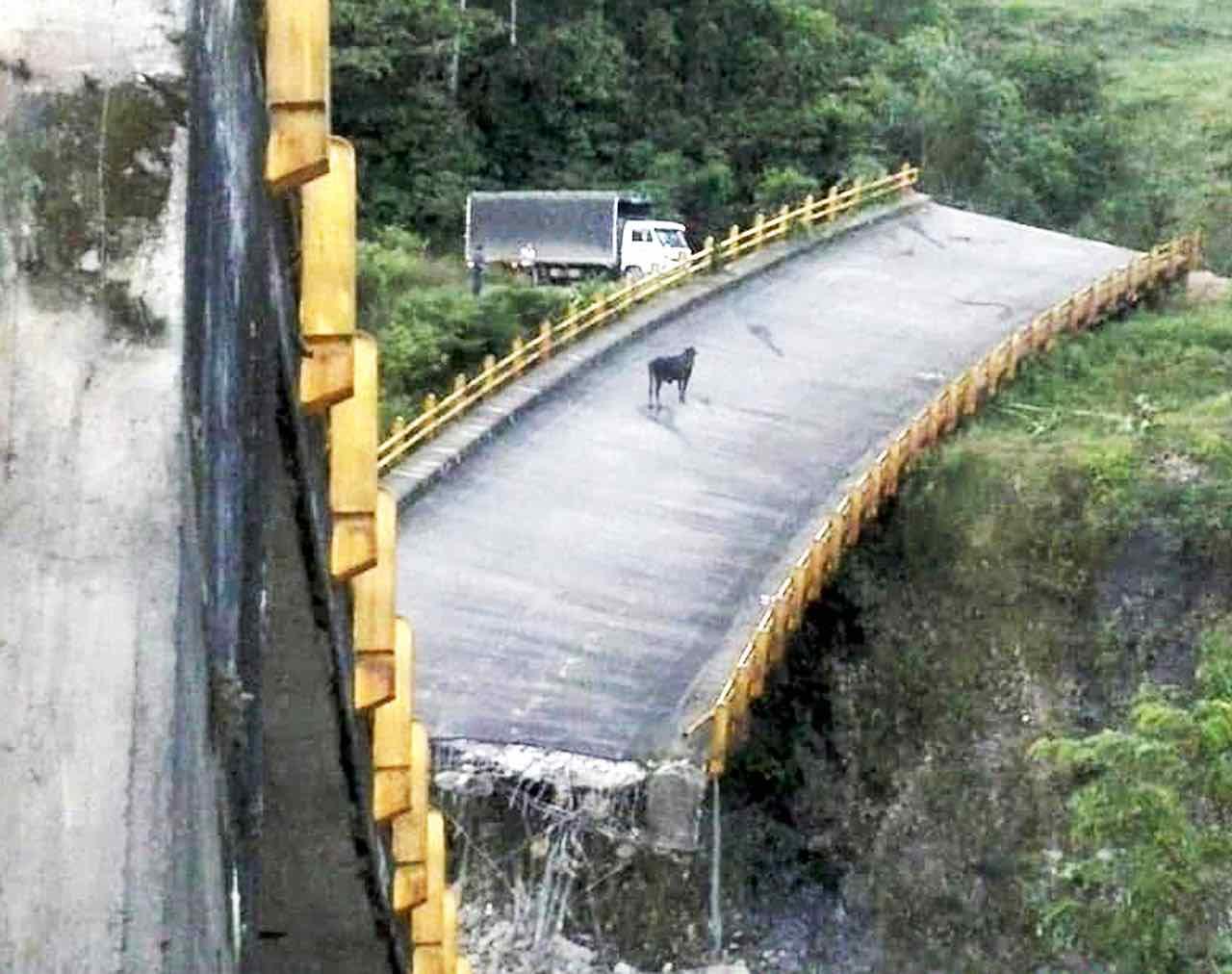 Puente La Orquídea 1