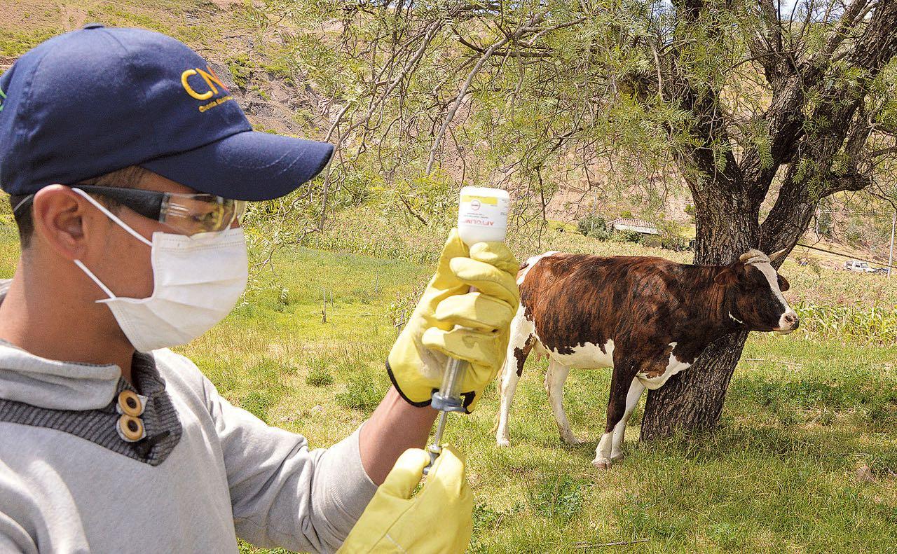 Durante todo el mes de noviembre el personal de la Secretaría de Desarrollo Agropecuario estará en jornada de vacunación animal.