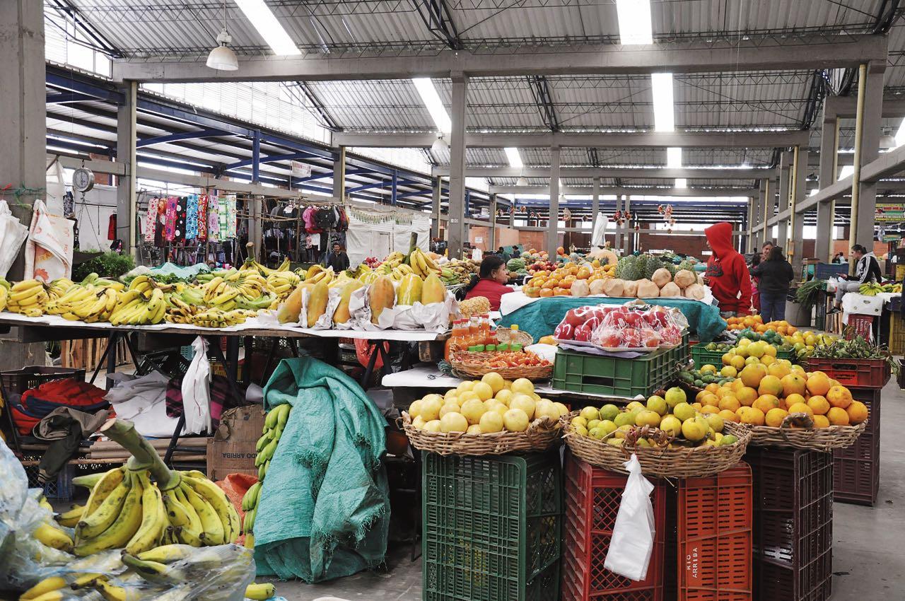 La vigilancia de los alimentos que consumen los habitantes será una función de la política pública.