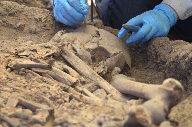 Se han encontrado 30 tumbas 10