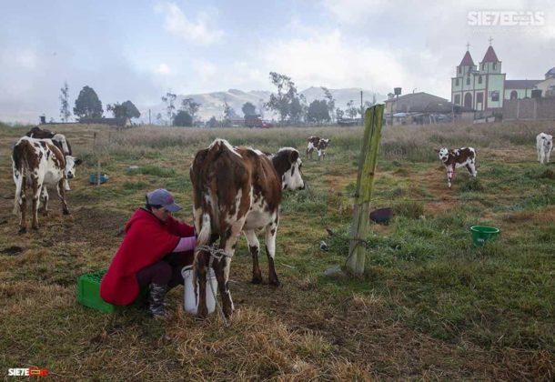 """""""La alimentación de todos los colombianos y colombianas está en las manos de los campesinos y campesinas de Colombia """" Comunicado-Convocatoria-Carta 1"""