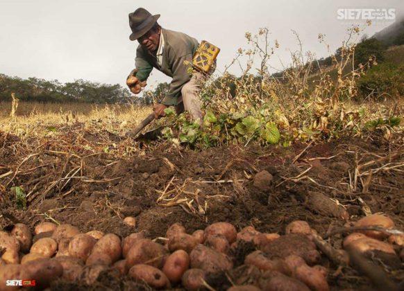 """""""La alimentación de todos los colombianos y colombianas está en las manos de los campesinos y campesinas de Colombia """" Comunicado-Convocatoria-Carta 3"""