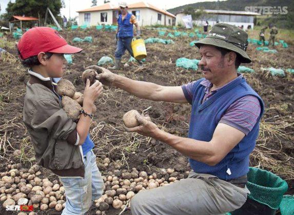 """""""La alimentación de todos los colombianos y colombianas está en las manos de los campesinos y campesinas de Colombia """" Comunicado-Convocatoria-Carta 7"""
