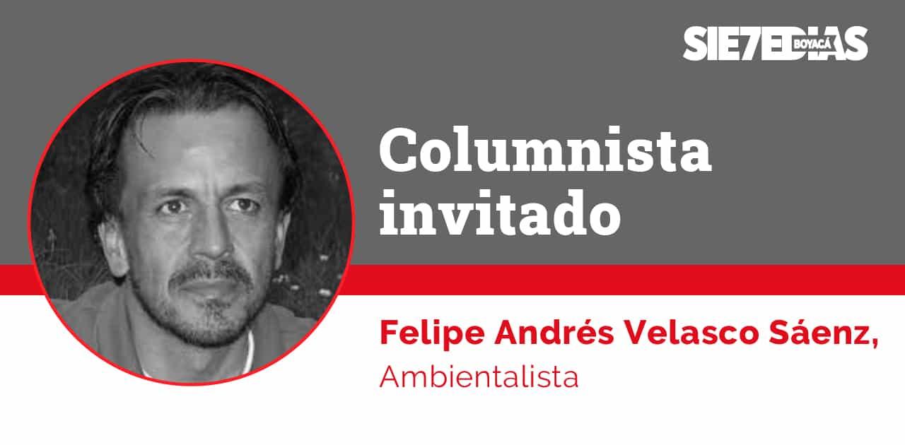 El abuelo lago (II) - Felipe Andrés Velasco Sáenz - #ColumnistaInvitado 1