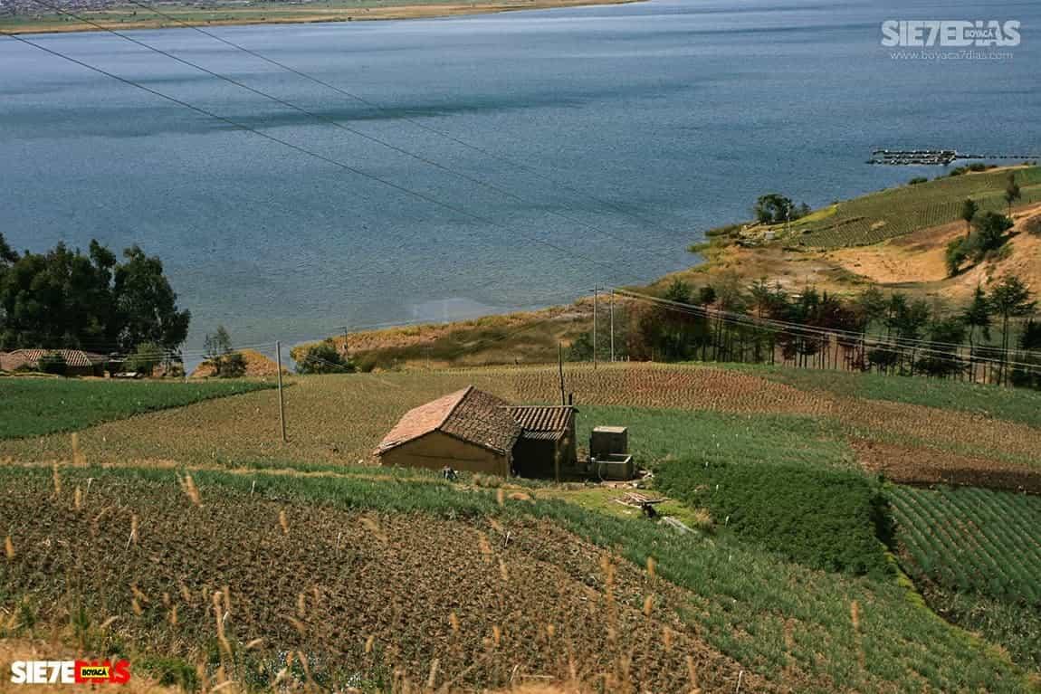 'Verdaderamente sí hay una grave contaminación en el lago de Tota, no solo de plomo', procurador ambiental #LaEntrevista #LoDijoEn7días 4