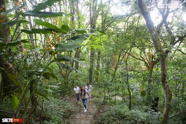 [Galería] 'Reserva forestal El Bosque' un encanto natural de Miraflores Boyacá #AlNatural 3