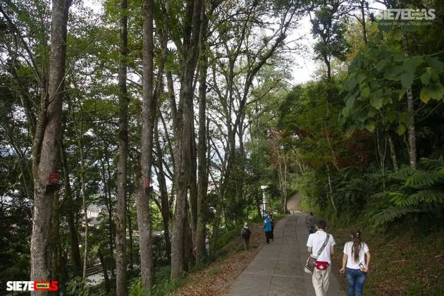 [Galería] 'Reserva forestal El Bosque' un encanto natural de Miraflores Boyacá #AlNatural 8