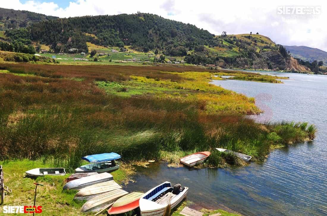 El plomo no sería el problema más grave que aqueja al lago de Tota, un ecosistema altamente amenazado 1