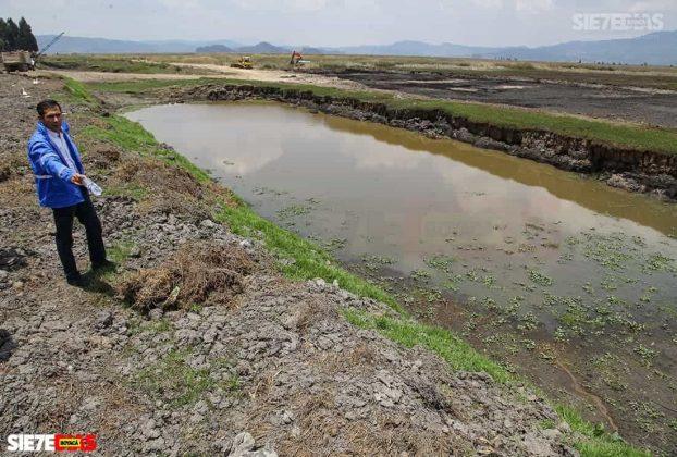 [Galería] - Laguna de Fúquene, hábitat de peces, crustáceos, anfibios y más de 150 especies de aves entre endémicas, amenazadas y migratorias. #AlNatural 11