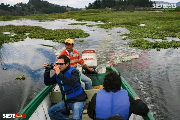 [Galería] - Laguna de Fúquene, hábitat de peces, crustáceos, anfibios y más de 150 especies de aves entre endémicas, amenazadas y migratorias. #AlNatural 2