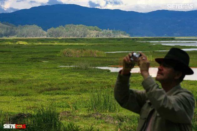 [Galería] - Laguna de Fúquene, hábitat de peces, crustáceos, anfibios y más de 150 especies de aves entre endémicas, amenazadas y migratorias. #AlNatural 4