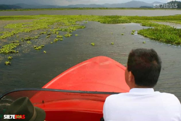 [Galería] - Laguna de Fúquene, hábitat de peces, crustáceos, anfibios y más de 150 especies de aves entre endémicas, amenazadas y migratorias. #AlNatural 7
