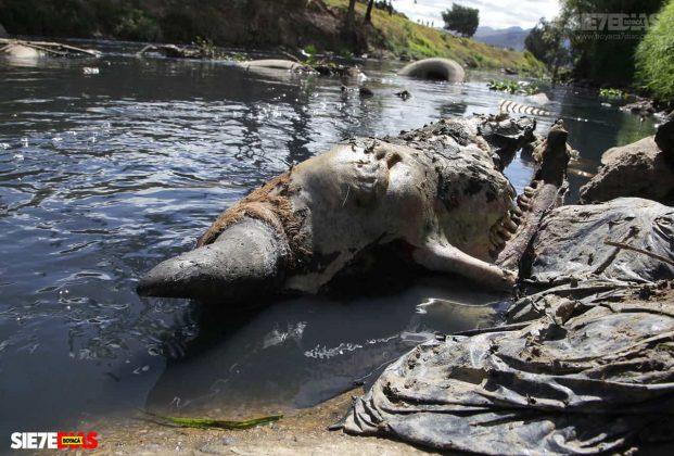 [Galería] - La batalla por el agua en Boyacá, uno de los manantiales del país 3