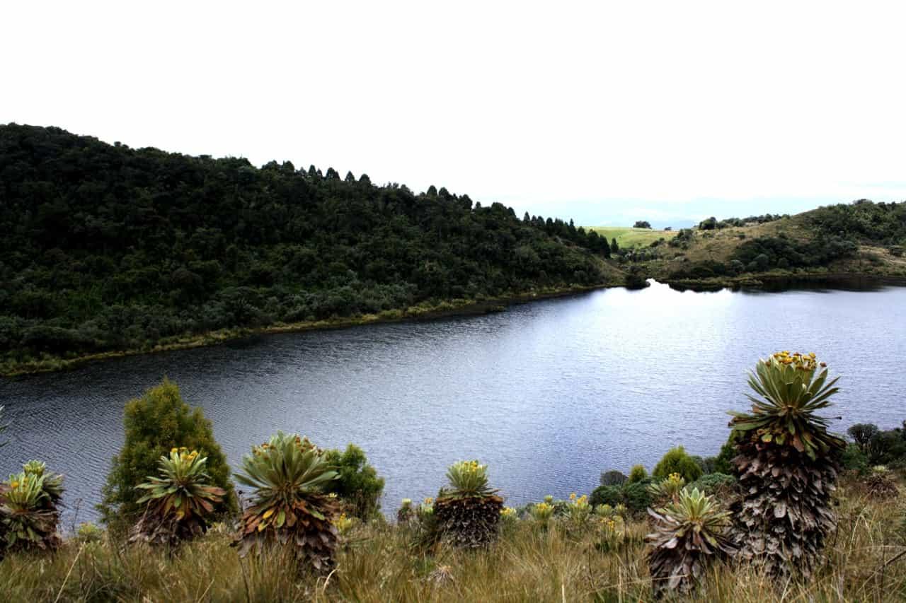 El agua, una de las apuestas de Veolia en su modelo multifacético de economía circular 1