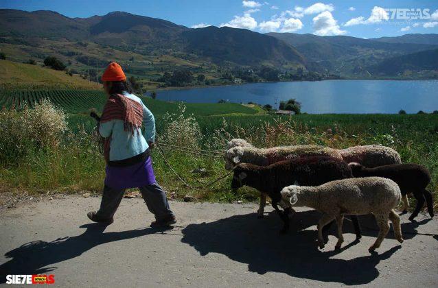 [Galería] - Lago de Tota, el mar dulce de Colombia #AlNatural 2