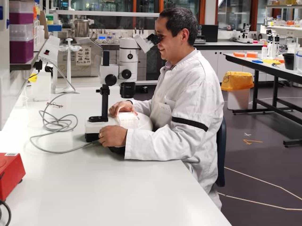 Un boyacense es investigador del principal centro de estudios agrícolas del mundo 2