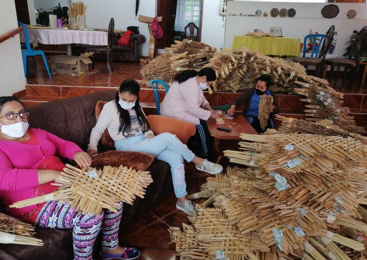 7.500 ramos artesanales entregará hoy Corpochivor para proteger la palma de cera en su territorio 1