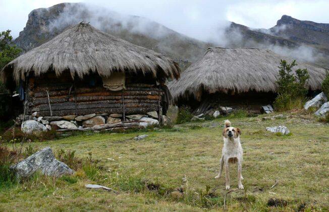 [Galería] - El páramo de Chiscas, uno de los más conservados del departamento de Boyacá - #AlNatural 6