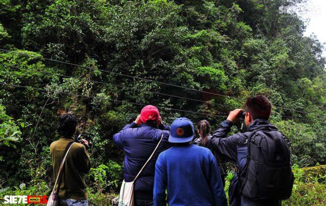 [Galería] - El sendero La Esmeralda, la joya ecoturística del Valle de Tenza #AlNatural 7