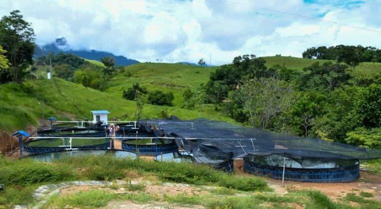 Complejo Piscícola una realidad en Puerto Boyacá 1