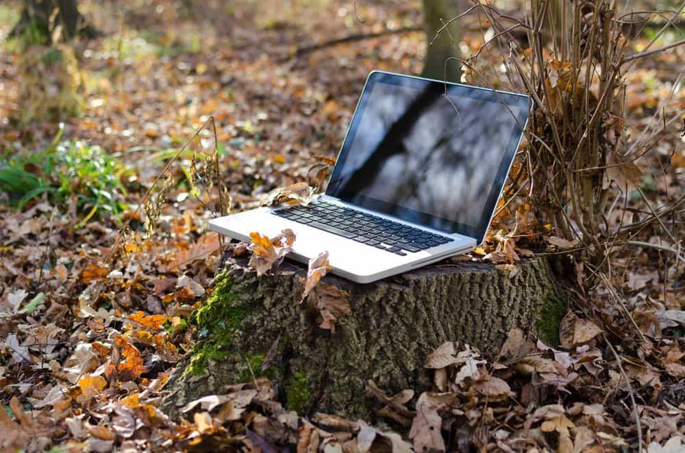 ¿Qué tanto daño causa el uso del internet al medio ambiente? 1