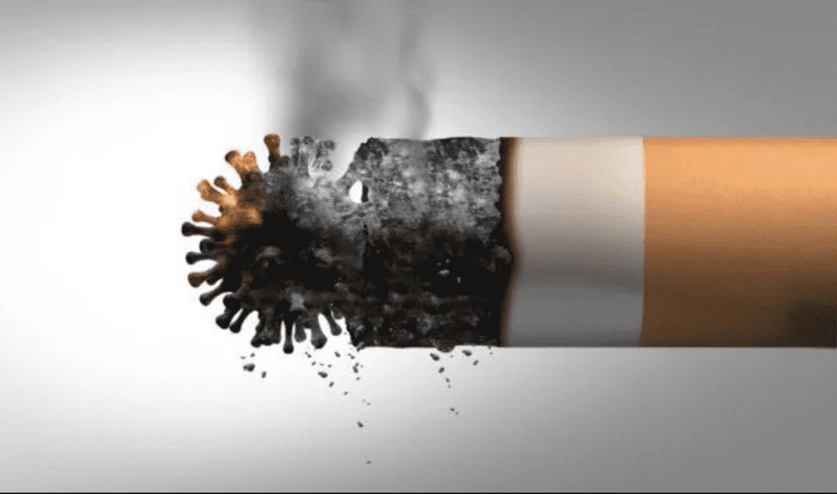 Tunja celebra esta tarde el día mundial sin tabaco 1