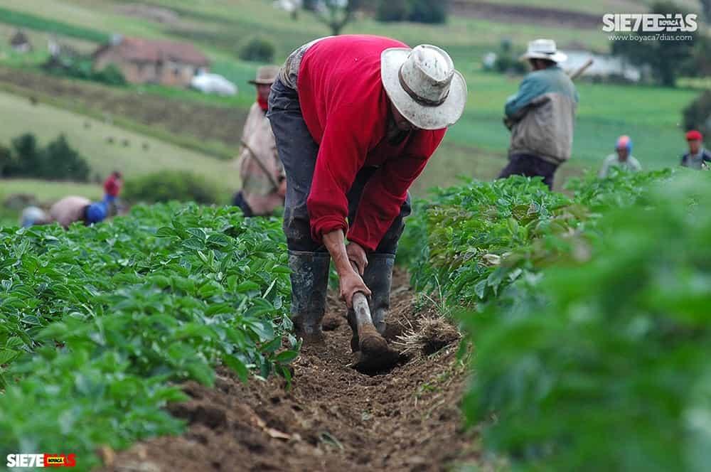 'Los descuentos para los agricultores no son la solución a la crisis', afirman los campesinos 1