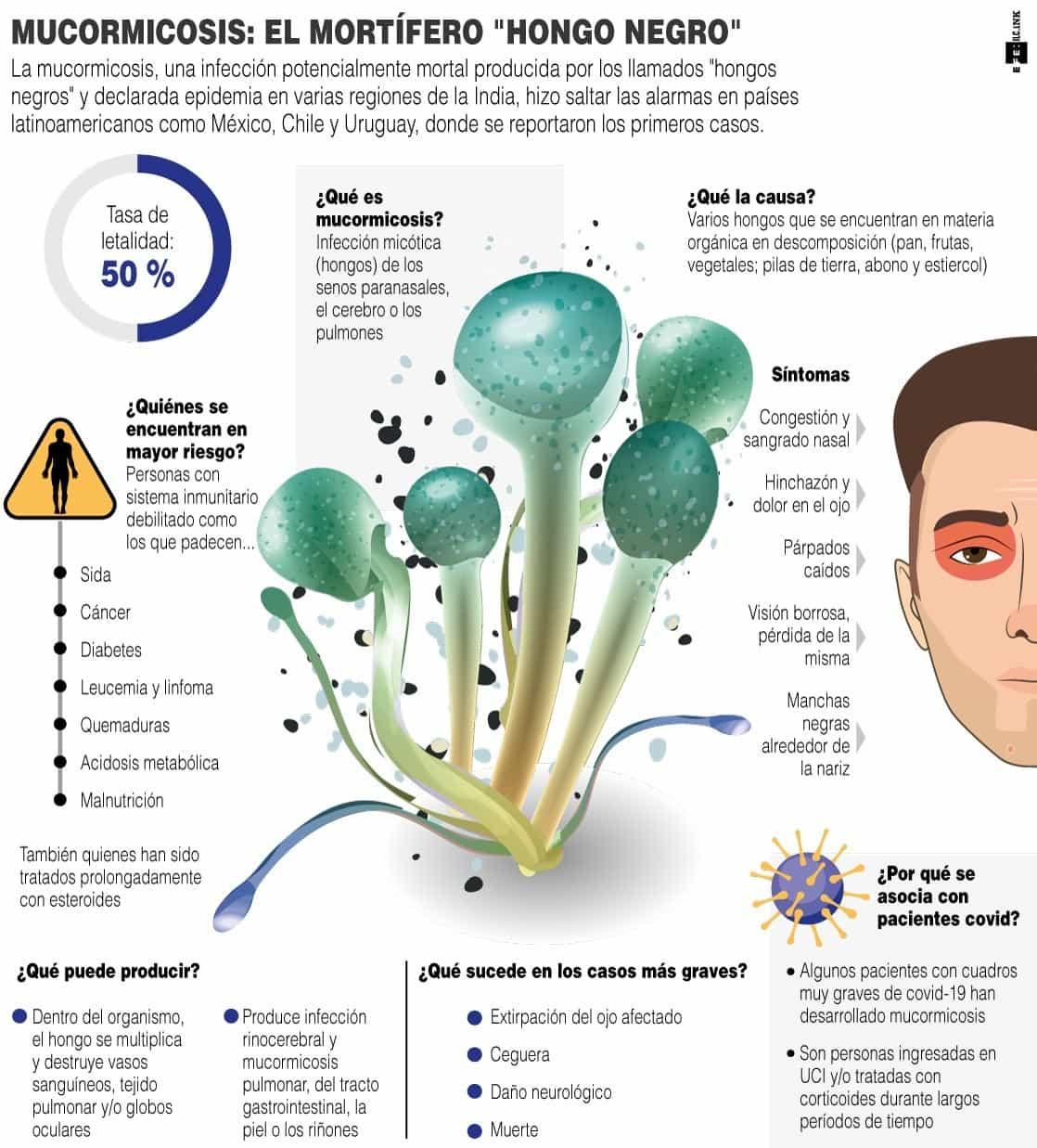 """[Infografía] - Mucormicosis: el mortífero """"hongo negro"""" 1"""