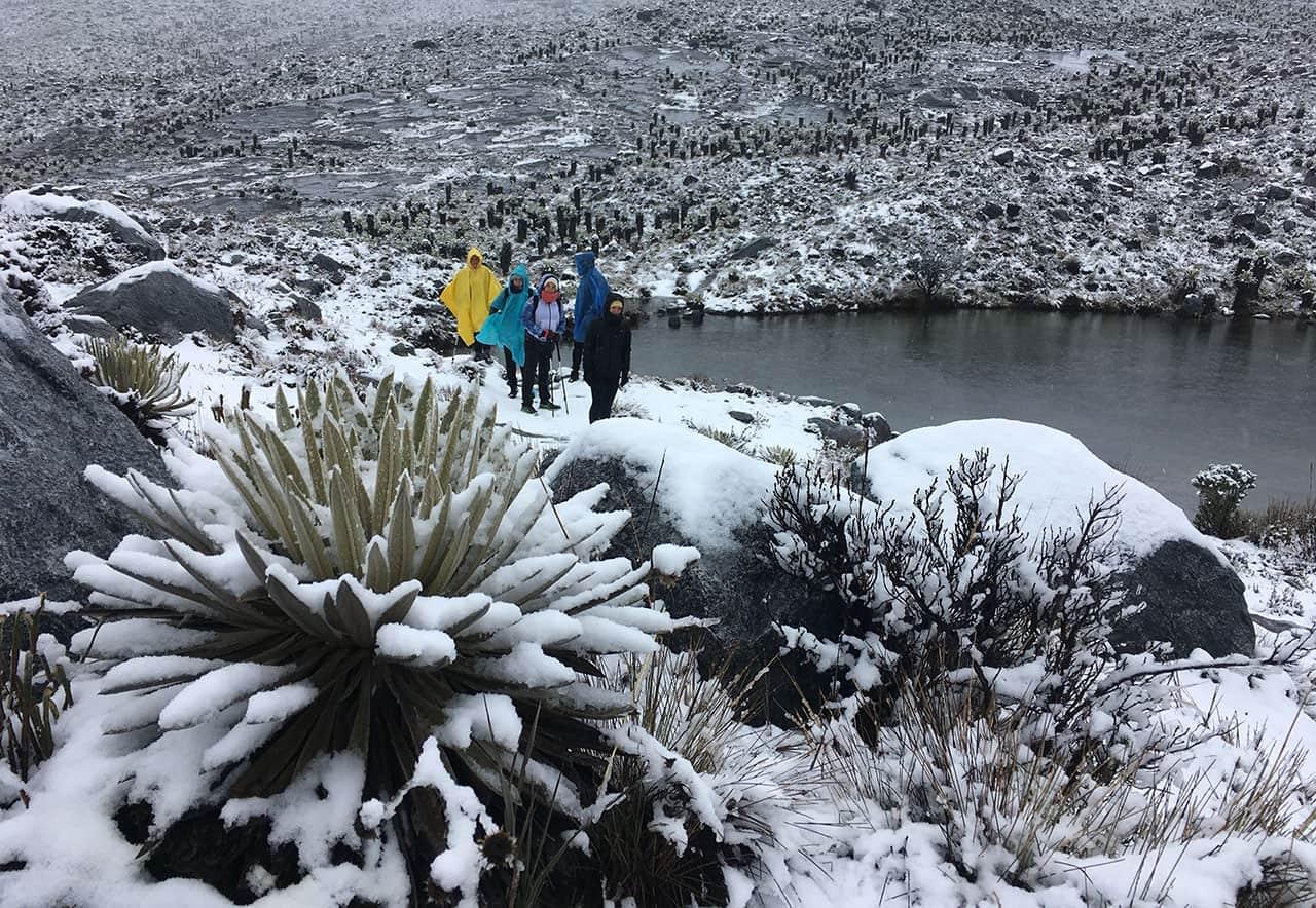 [Galería] - La Sierra Nevada de Güicán, un paraíso en el corazón de los Andes 10
