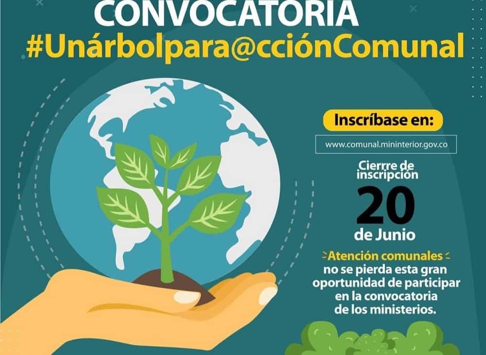 Boyacá le apuesta al reto de ayudar a sembrar 180 millones de árboles #Tolditos7días 1