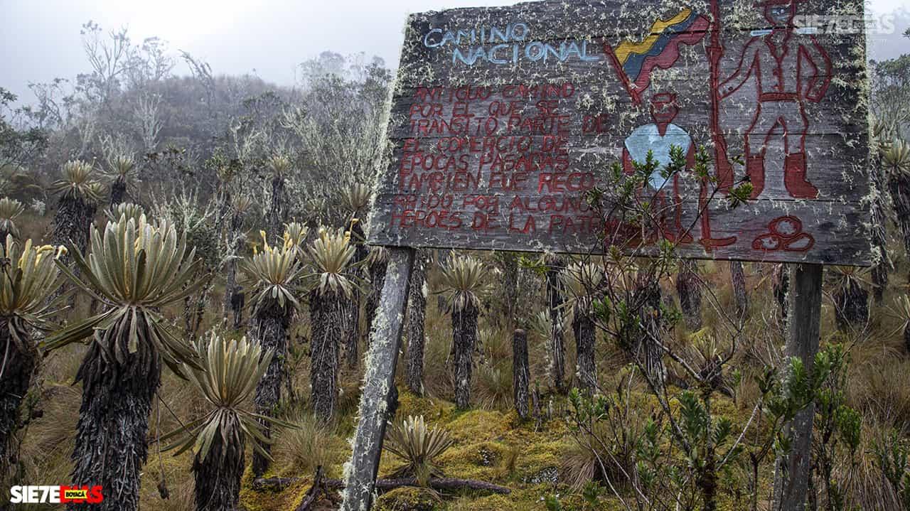 [Galería] - Reserva El Chuscal en El Espino, un lugar para conectarse con la naturaleza 6