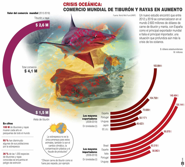 [Infografía] Comercio mundial de tiburón y rayas, en aumento 1