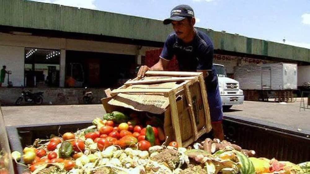 En el mundo, 2.500 millones de toneladas de alimentos dejan de consumirse anualmente 1