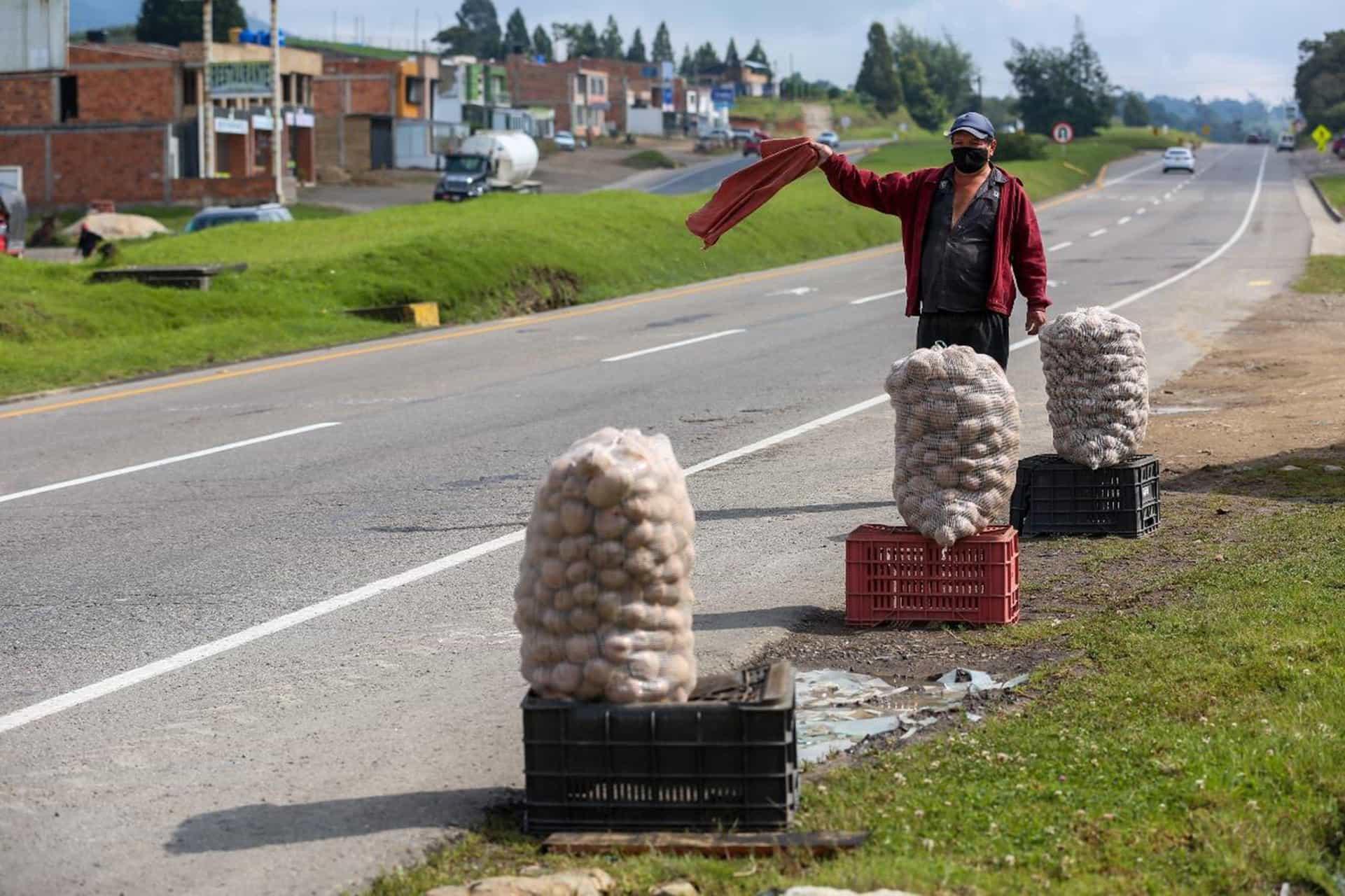 Cerca de 35 mil familias viven del cultivo de papa en Boyacá y 'han llevado del bulto' #LaEntrevista7días 3