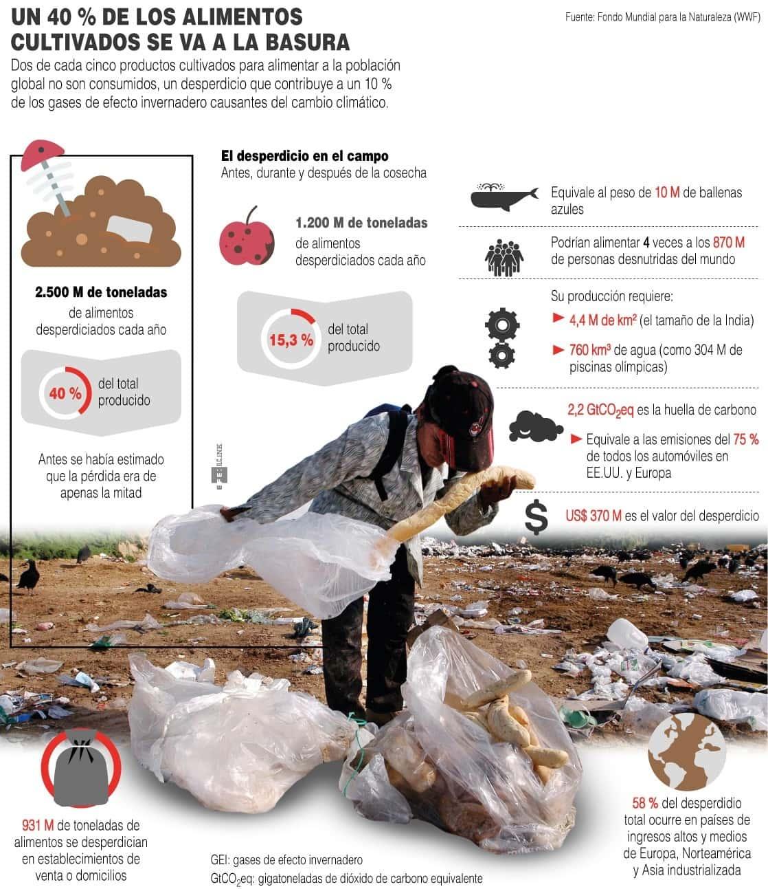 [Infografía] Un 40 % de los alimentos cultivados se va a la basura