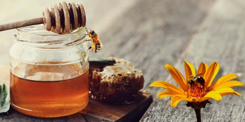 Entre el 80 y el 90 por ciento de la miel que se comercializa al público es falsa, es adulterada. La miel de abejas pura no se vende ni en las calles, ni en las plazas de mercado. Foto: archivo particular.
