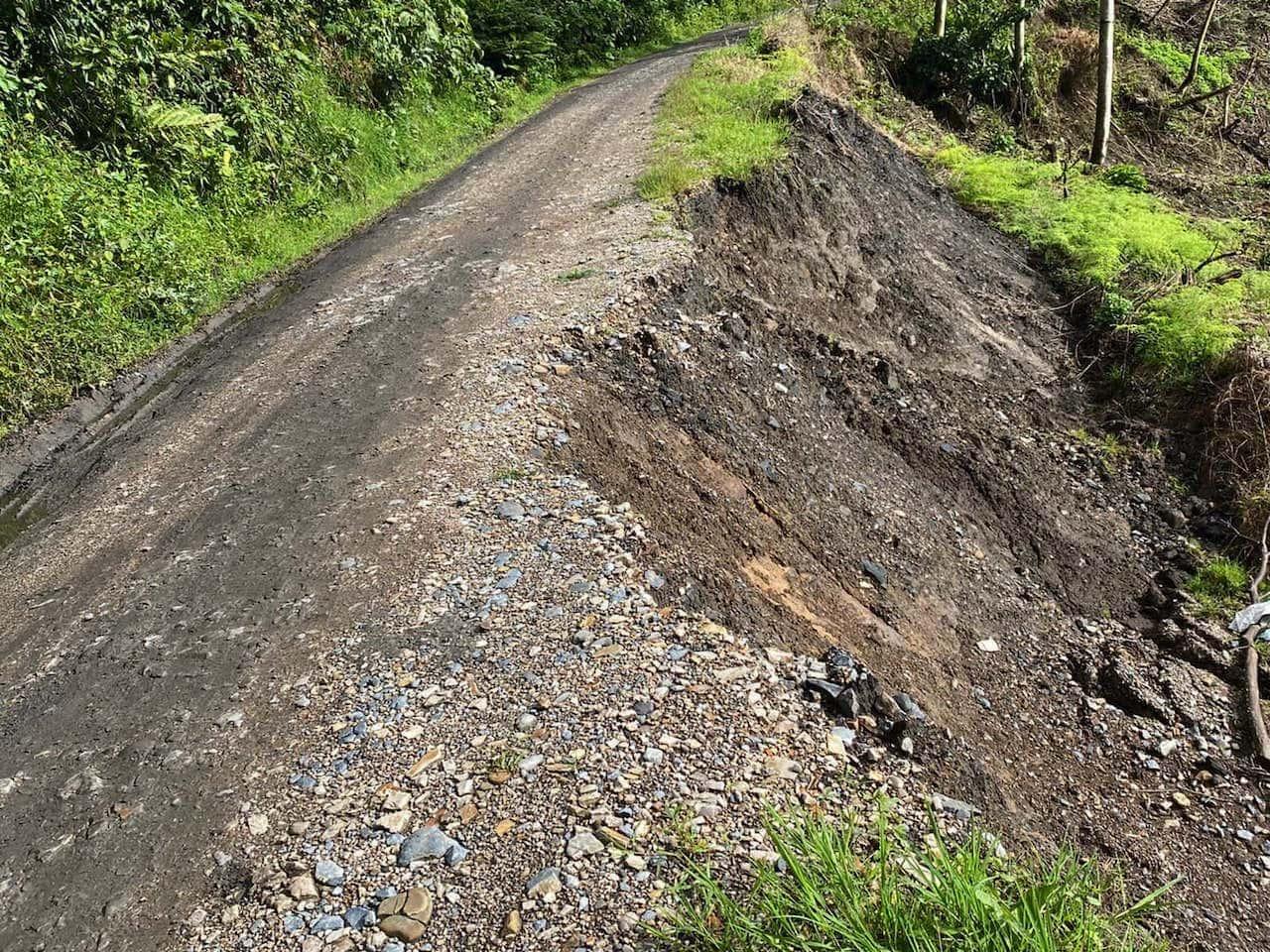 Por la tala irresponsable de árboles, el municipio de Togüí quedaría incomunicado 1