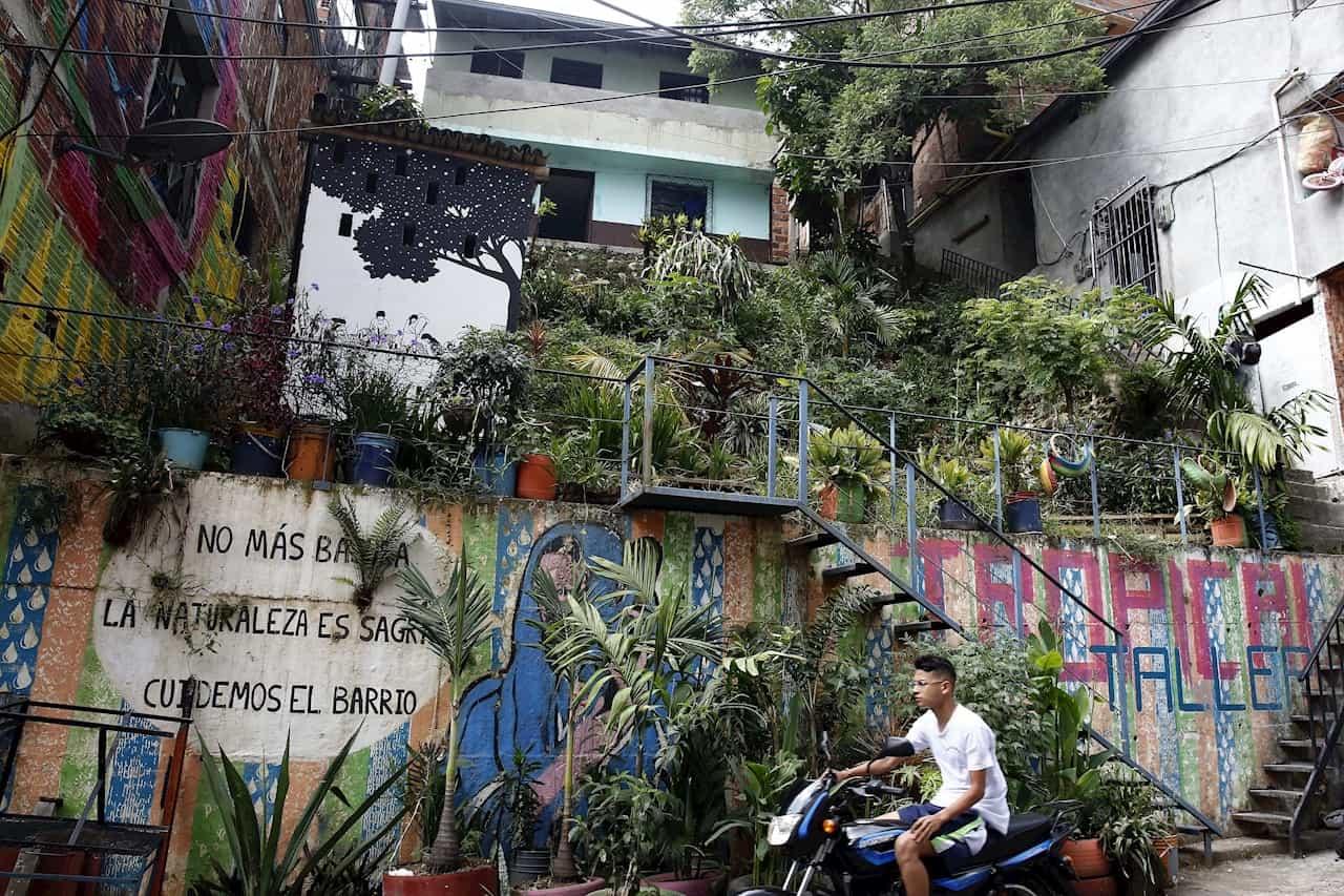 Moravia, el vibrante barrio de Medellín que transformó su basurero en jardín 3