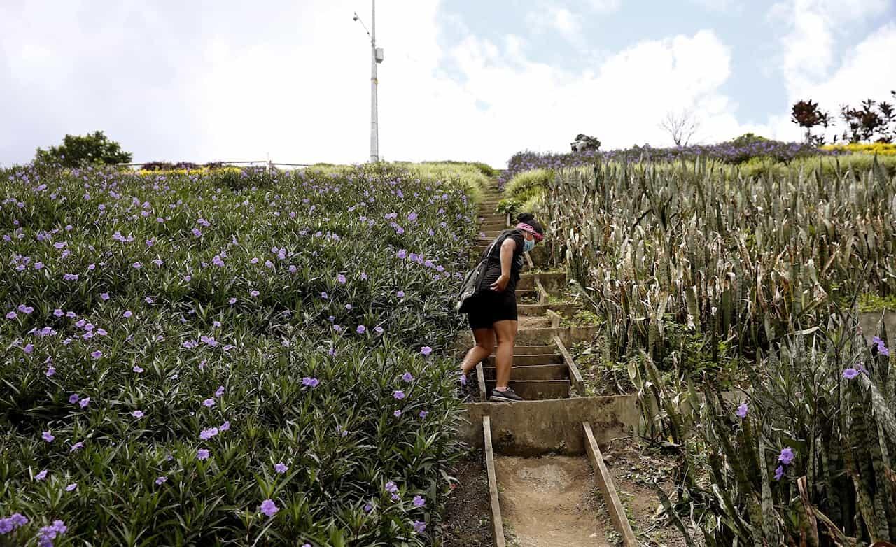 Moravia, el vibrante barrio de Medellín que transformó su basurero en jardín 1