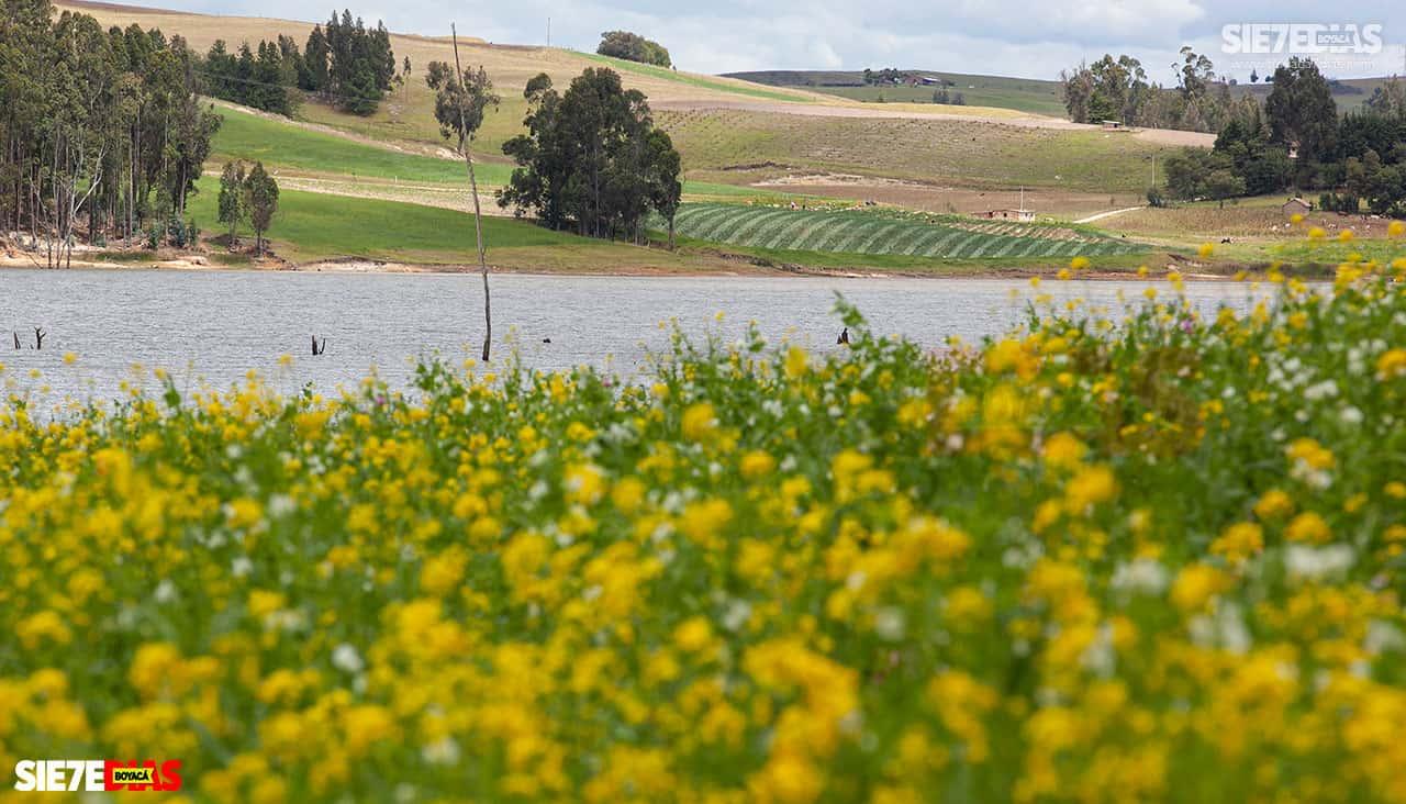 [Galería] - La represa de La Copa: agua, paisaje y tranquilidad en un solo lugar #AlNatural 3