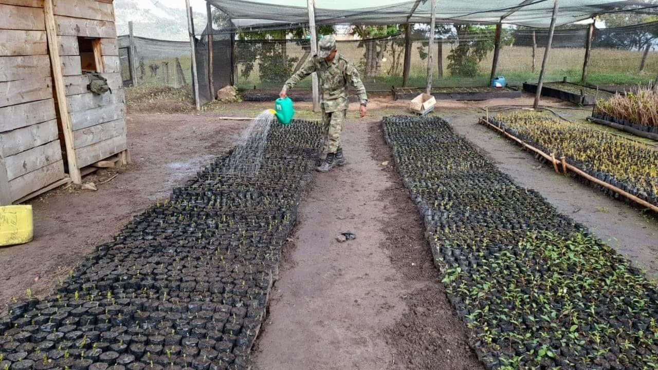 Soldados de la Primera Brigada, en misión para rescatar los páramos de Boyacá 1